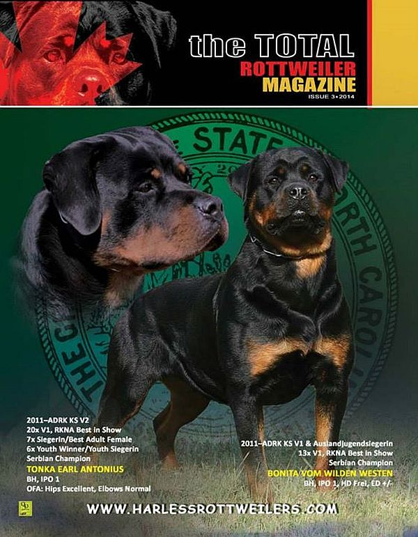 Issue 3 Of 2014 The Total Rottweiler Magazine