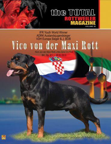 Cover Volume 30