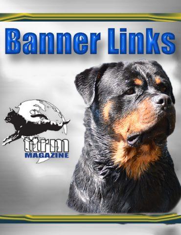 Banner Links
