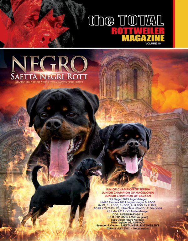 Total Rottweiler Magazine Cover Volume 40; Issue 3 of 2019