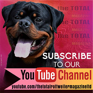 Subscribe to TTRM on YouTube