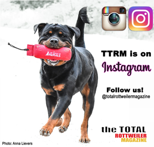 Follow TTRM on Instagram