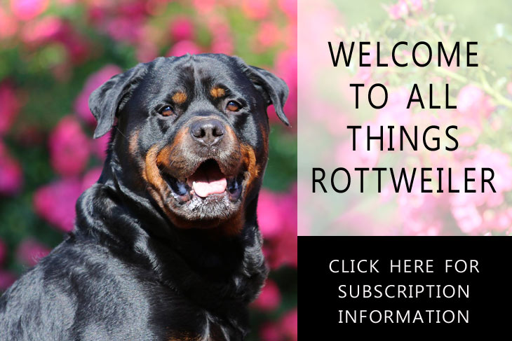 The Total Rottweiler Magazine