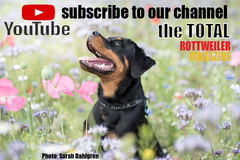 TTRM YouTube