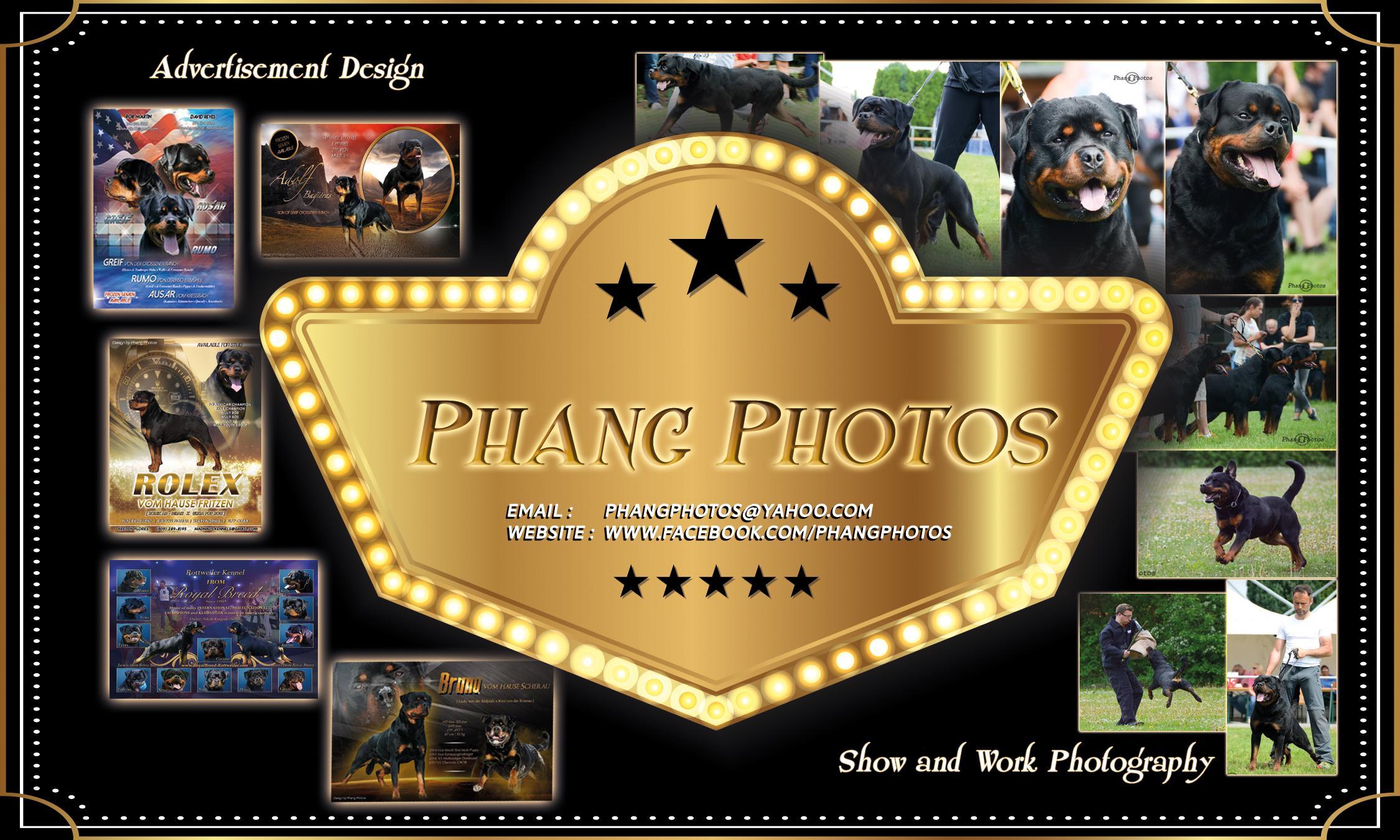 Phang Photos & Design